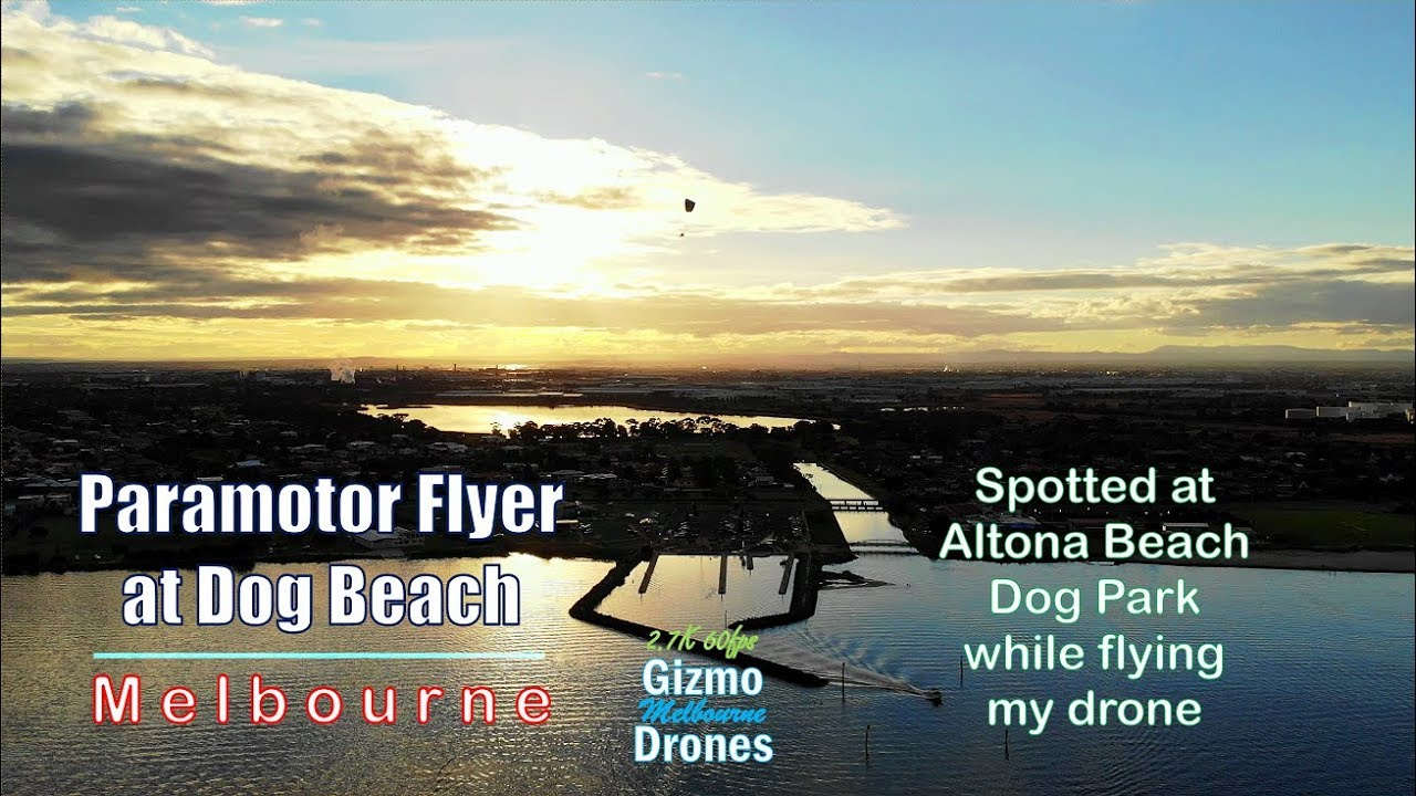 Paramotoring Flyer at Altona Dog Beach by Drone - Melbourne, Victoria, Australiia