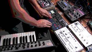 """New Beat EBM live w. Moog Dreadbox Electribe 303 Blofeld Tetra: """"Los Infantes del Excelsior"""""""