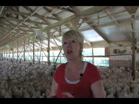 Kim Halvorson Minnesota Turkey Farmer