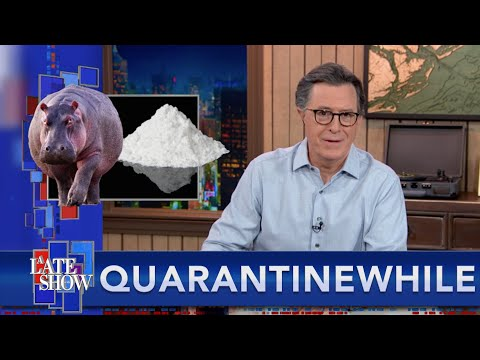Quarantinewhile... Stephen Offers A Solution For Colombia's Cocaine Hippo Problem
