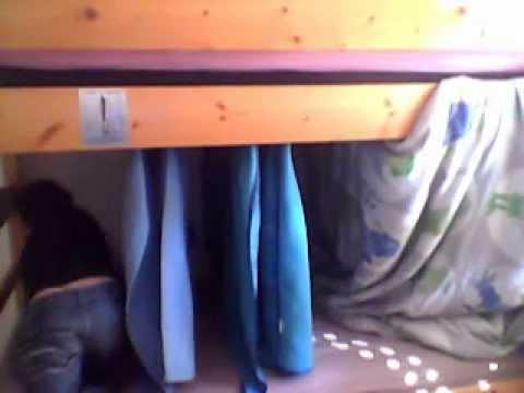 gabriel montre comment fair des cabane dans ca chambre 3. Black Bedroom Furniture Sets. Home Design Ideas