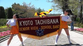 Blumen Hügel Parade2017 PartⅠ Kyoto Tachibana SHS Band 京都橘高校吹奏楽部