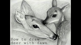 How to draw Deer with Fawn (tutorial)