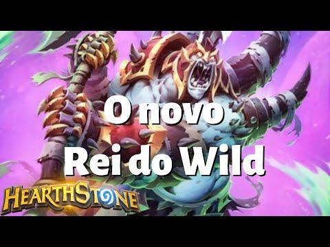 Suffle Warlock | O Wild nunca mais será o mesmo | Hearthstone