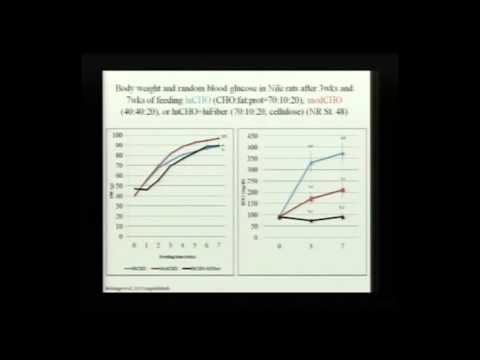 PINC 2013: Oil Palm Phenolics & Diabetes by Dr. Julia Bolsinger
