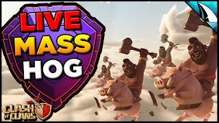 *Hogs In Legends* Showing Live Attacks In Legends League   Clash of Clans