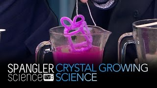 Crystal Growing Science - Cool Science Experiment