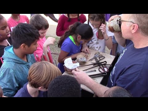 Mobile Glass Blowing Studios At Furlow Charter School + ART DAY 2017 (Full Length)
