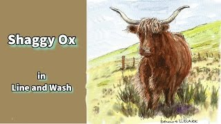 Line and wash watercolor painting tutorial - how to draw and paint a shaggy ox