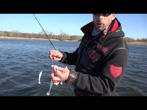 "Slay Spring ""Stripers"" -CT Housatonic River"