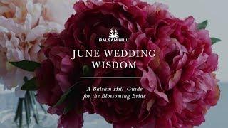 June Wedding Wisdom: A Balsam Hill™ Guide for the Blossoming Bride