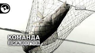 Летняя рыбалка. Третья неделя июня | Календарь рыболова