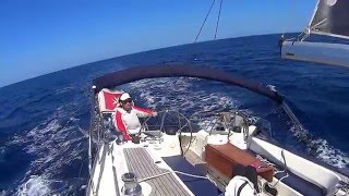 Sailing in Malta next to dolphins: Bavaria 50 Vision