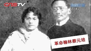 "蔡元培为什么被称作""革命翰林"" / China's 1911 Revolution: Cai Yuanpei"