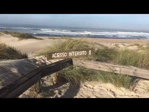 Reserva de São Jacinto - Costa Atlântica de Portugal
