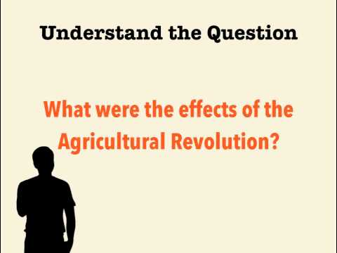 Standard Essays - Step 1: Understand the Question