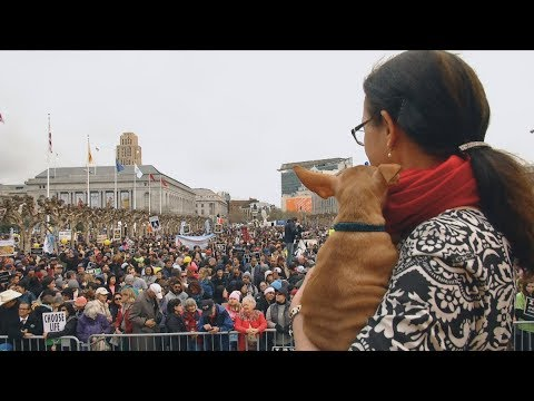 2018 Walk for Life promo video