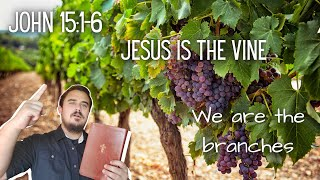 Who Gives Us Life? Jesus Is The Vine & We Are The Branches - John 15
