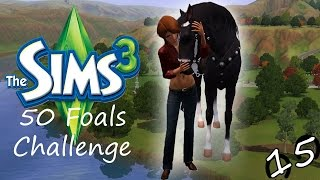 Let's Play: The Sims 3 50 Foals Challenge - Part #15 - Training Horses & Chris's Birthday!