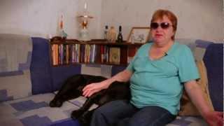 2+4. Фильм о слепых и поводырях