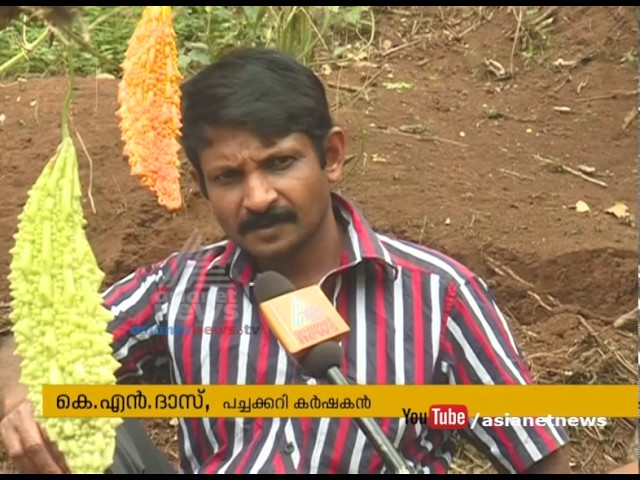 Idukki gourd farmers are in crisis