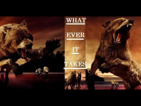 Twilight Wolves - Whatever It Takes