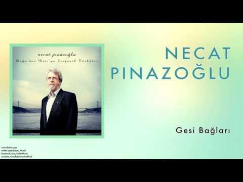 Necat Pınazoğlu - Gesi Bağları [ Doğu'dan Batı'ya Senfonik Türküler © 2013 Kalan Müzik ]