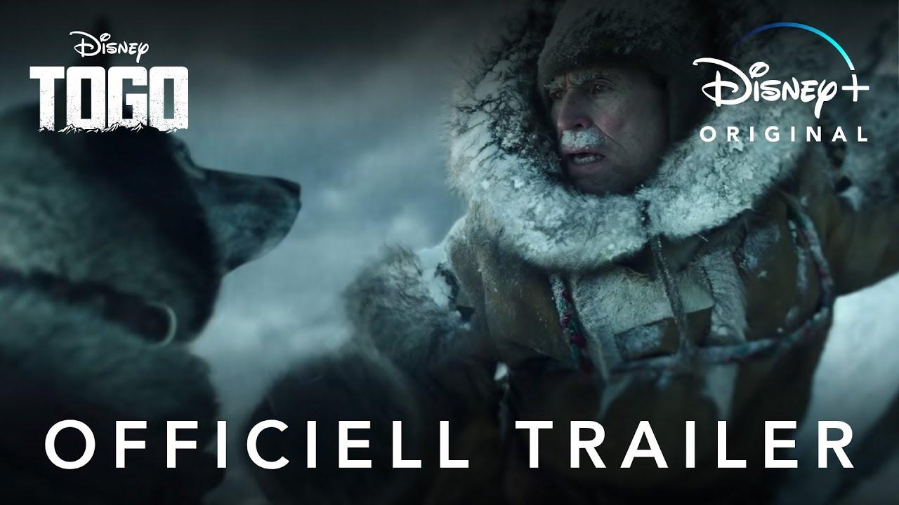 Download Trailer   Togo   Disney+ Sverige