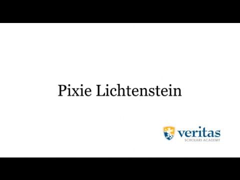 Pixie Lichtenstein VSA Consultant Introduction Video