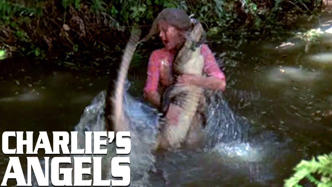 Kris Wrestles An Alligator | Charlie's Angels