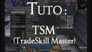 TradeSkillMaster Tuto FR Config/Transmo
