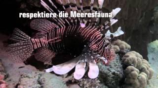 Umweltschutz für das Rote Meer