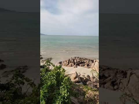 wild beach Samui during covid time