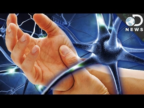why-can't-we-reverse-nerve-damage?
