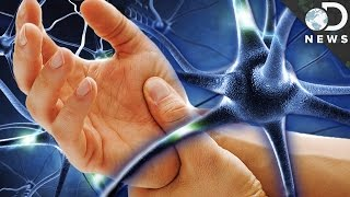 Why Can't We Reverse Nerve Damage?