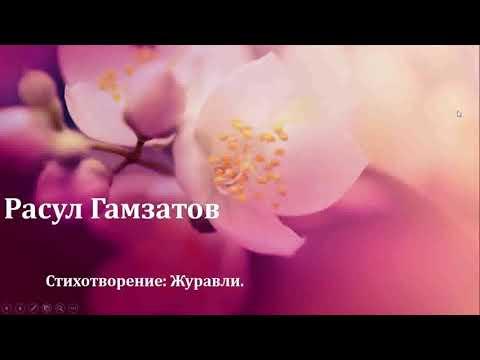 Видео урок на тему Р. Гамзатов стихотворение Журавли