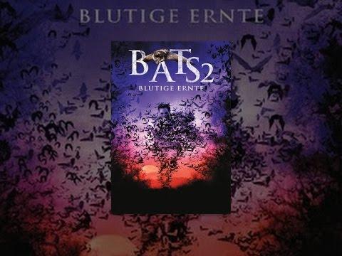Bats 2 -