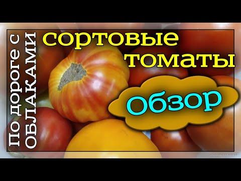 Обзор сортовых томатов. Вкуснотека. Фирма Поиск. Отзыв о сортах томатов. Помидоры.