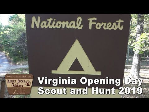 Virginia Opening Day Scout And Hunt 2019