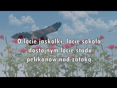Czesław Miłosz Lyrics