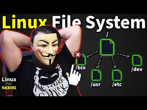 the Linux File System explained in 1,233 seconds // Linux for Hackers // EP 2
