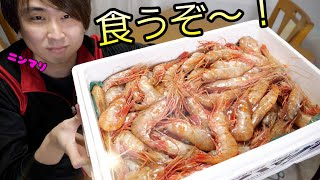 Tons of Botan shrimps came. Oh well, let's just eat a lot!