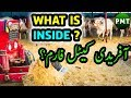 What is INSIDE BM Afridi Cattle Farm? Janwaron Ki Palai or Bakra Eid Ki Tayyarian!!! Full HD