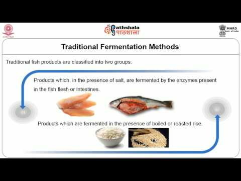 Fermentation Of Fish And Meat
