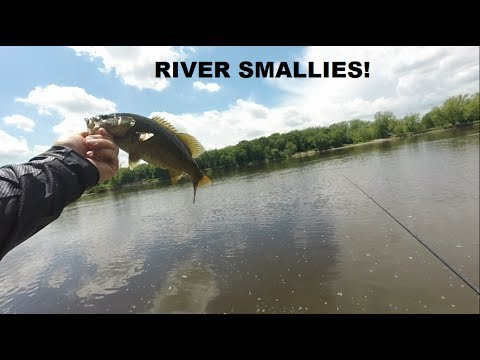 Minnesota Mississippi River Multi-species Fishing @ Coon Rapids Dam!