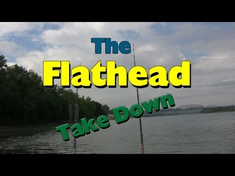 What a Flathead catfish bite looks like: The Take down from YouTube · High Definition · Duration:  1 minutes 43 seconds  · 39,000+ views · uploaded on 5/31/2013 · uploaded by Steve Douglas The Catfish Dude
