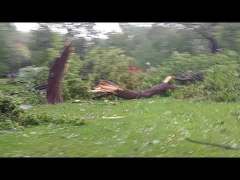 Montreal Girouard park August 22nd post 'tornado'