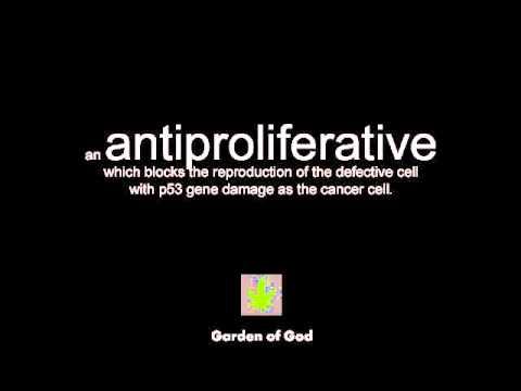 Medical Cannabis Cures Cancer... Green Hemp Peace Australia.