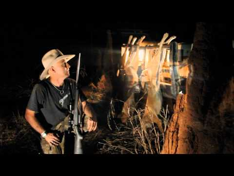 Hunting The northern territory- Part 1- Wild dog/dingo Cross