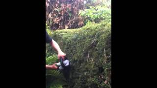 Hitachi CH18DSL 18v Cordless Hedgetrimmer